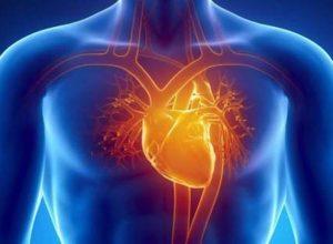 """Скорая сердечная помощь! Самые полезные продукты для """"мотора"""" человека! (ВИДЕО)"""