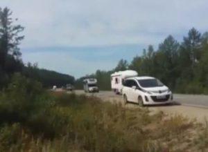 Росіяни, дивіться і плачте! Почалося! Ось так китайці масово заселяють Сибір на очах місцевого населення. ВІДЕО