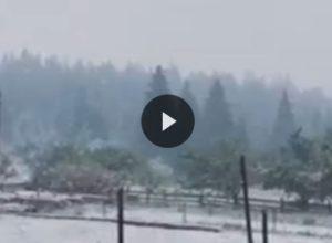 Три години назад в Карпатах випав перший сніг! Дивіться, що там зараз відбувається!